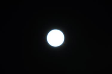 Dsc01253